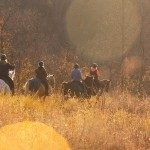 Gobble until you Wobble Endurance Ride at Elkin's Creek on November 21, 2015