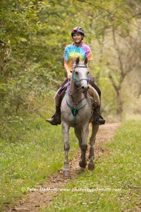 Salimonie Stomp Endurance Ride Patty DeMott