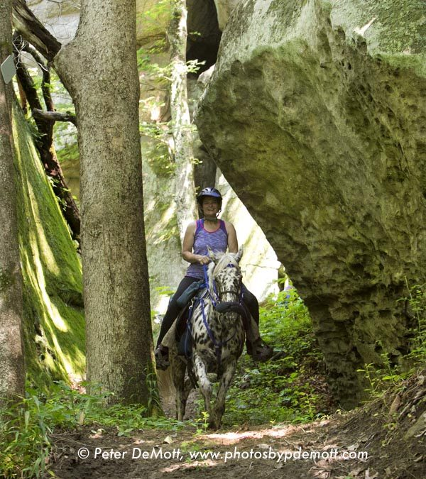 Pictures from the Black Sheep Boogie Endurance Ride